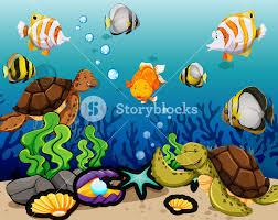 many sea animals swimming underwater illustration royalty free
