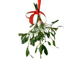 christmas mistletoe christmas traditions mistletoe the gift exchange
