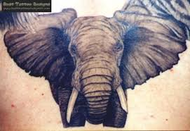 wild tattoos elephant tattoos for women