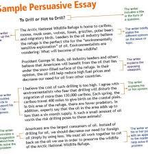 persuasive research paper topics for college students essay writing persuasive research paper topics for college students