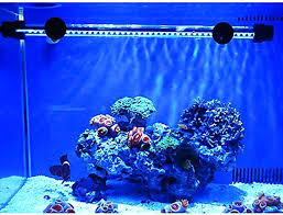led reef lighting reviews aquarium led lighting reviews aquarium led lighting reviews 2014