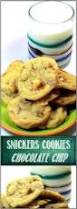 best 25 snicker cookies ideas on pinterest soft snickerdoodle