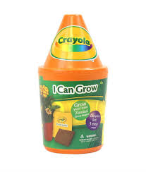 amazon com crayola i can grow kit sunflowers banana trees