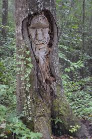 tree spirits of liberty county liberty county georgia