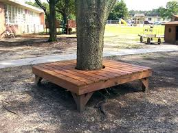 wrap around tree bench tree wrap around bench square wrap around