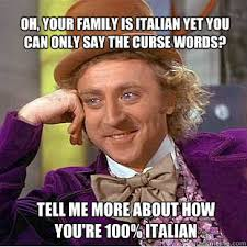 Funny Italian Memes - oh your family is italian yet you can only say the curse words