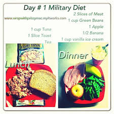 234 best 3 day military diet pan images on pinterest the
