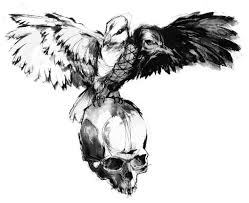 dove crow on skull tattoo drawing real photo pictures images