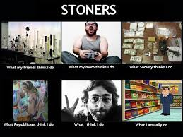Stoner Meme - truth about potheads smoke weed every day pinterest stoner