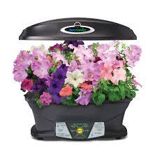 amazon com aerogarden extra with gourmet herb seed pod kit
