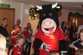 angus the bull club christmas party aberdeen fc