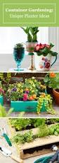 29 best indoor garden images on pinterest garden ideas indoor