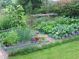 Introduction To Permaculture Course Permaculture Gardens And - Backyard permaculture design