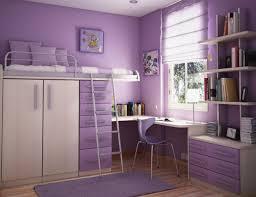 alluring purple color combination interior design for small