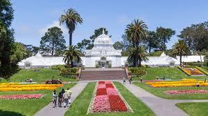 Botanical Gardens Golden Gate Park by Inside Golden Gate Park U0027s Stunning Conservatory Of Flowers Curbed Sf
