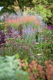359 best planting design images on pinterest ornamental grasses