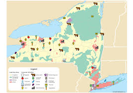 Map New York State by Ohc Research Page Alternate New York State Economic Map