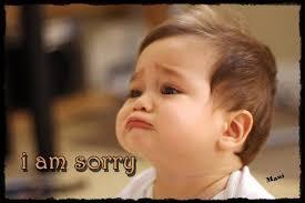 Funny Sorry Memes - sorry funny images impremedia net