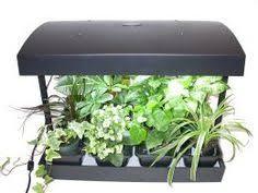 best grow lights for vegetables how to select the best grow light for indoor growing garden ideas