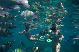 Delaware Snorkeling images Snorkel tour to koh phi phi by speed boat from koh lanta tours and jpg