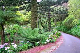 New Zealand Botanical Gardens Wellington Cable Car And Botanical Gardens Attractions
