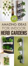 Herbs Indoors Best 25 Wall Herb Gardens Ideas On Pinterest Herb Wall Indoor