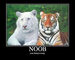 Noob Meme - image 205875 noob know your meme