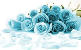 white blue roses duck egg blue roses canvas picture wall print a2 20 x 14 ebay