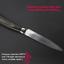 haoye 2 piece damascus kitchen knives set chef knife and utility