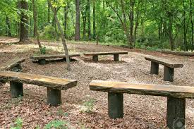 a ring of old wood timber benches in a forest stock photo picture