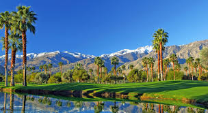 used lexus for sale palm springs palm springs boutique hotel destinations