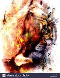 portrait tiger with eagle color abstract background and ornament
