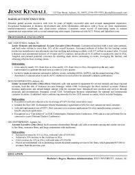 Insurance Resume Objective Examples Buy Theater Studies Resume Cheap Dissertation Methodology Writing