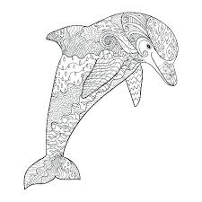 printable dolphin images dolphins coloring pages dolphins coloring pages dolphin color page