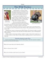 Questions About Thanksgiving Printable Thanksgiving Worksheet The Turkey