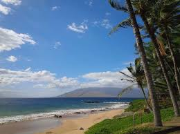 Black Sand Beaches Maui by The Best Beaches For Snorkeling In Maui