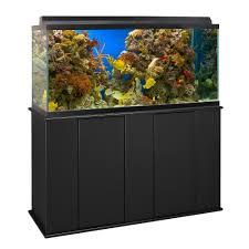 Aquarium For Home Decoration Fish Tanks Saltwater U0026 Freshwater Aquariums U0026 Supplies Petco
