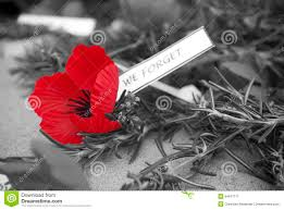 remembrance day poppy stock photos images u0026 pictures 1 670 images