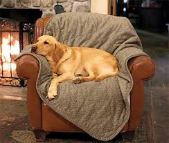 Dog Blankets For Sofa by Pet Hair Resistant Blanket Improved Microfiber Reversible Throw