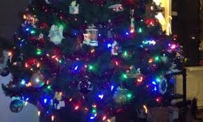 Christmas Tree Shopping Tips - anna sysling wdet