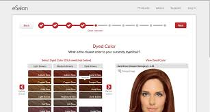 esalon hair color reviews with pictures esalon the new revolution in at home hair coloring savvy sassy moms