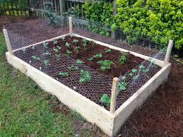 simple diy custom raised garden beds with rabbit fence for small