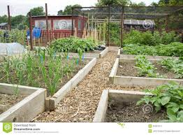 tidy vegetable garden royalty free stock photography image 34591477