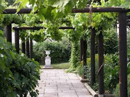 roman garden with boxwood and gravels the elegant roman gardens