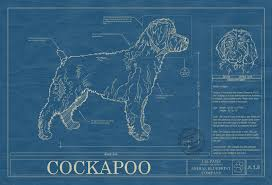 Blue Print Size by Cockapoo Animal Blueprint Company