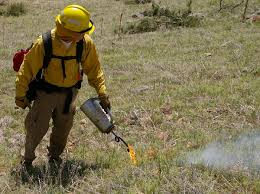 Wildfire Tools by Driptorch Wikipedia