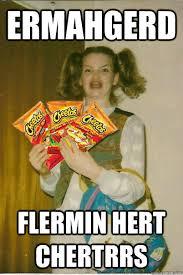 Berk Meme - ermahgerd flermin hert chertrrs hot cheetos berk quickmeme