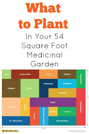 592 best organic backyard gardening images on pinterest flat