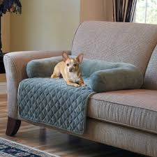 Dog Settee Sofa Sofa Dog Sofa Cover Unique Dog Couches Luxury Designer Dog Beds