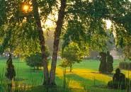 Columbus Topiary Garden - columbus topiary garden